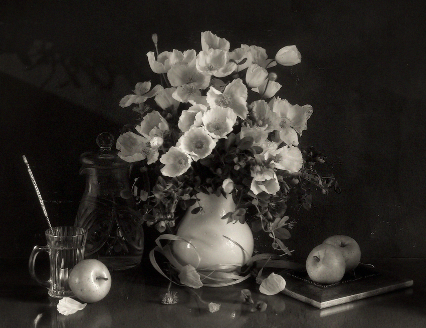 Black and White Still life photography  BWVISION  Black