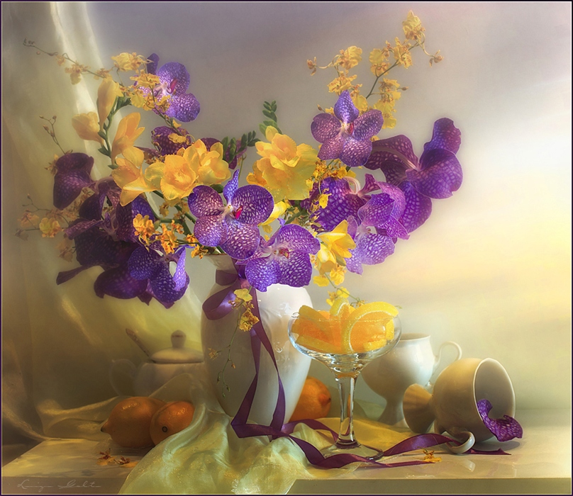 Фото жизнь - Luiza Gelts - Still  Lifes - Butterflies